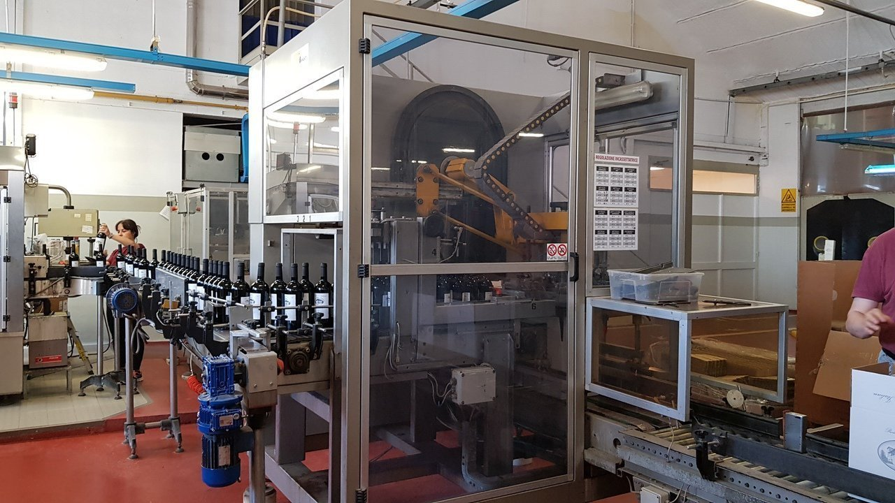 Used End of line Glass for Still Wine 6000 bph - 10